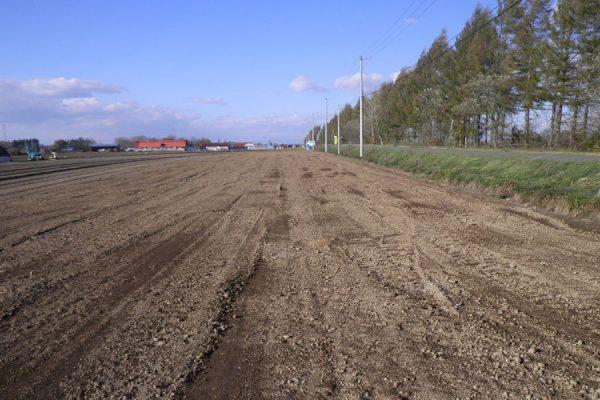 畑地帯(育成)南平和第2地区41工区