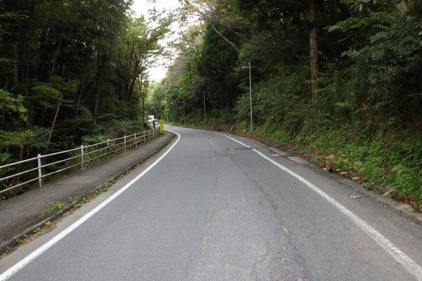 道路橋りょう整備(再復)工事(改良舗装)  【№0241】